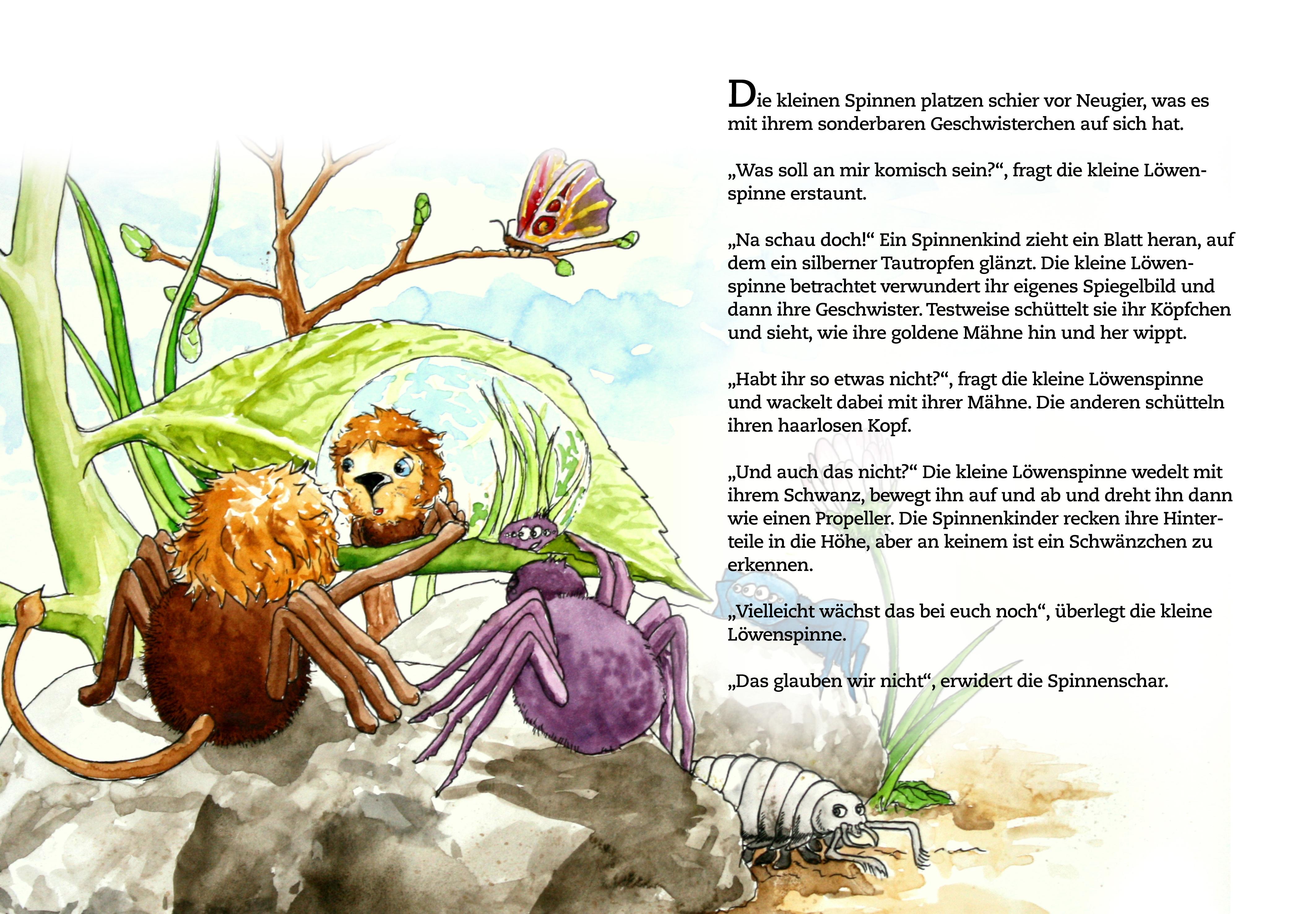 Die kleine Löwenspinne von Charoline Bauer